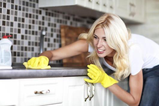 домакинска работа
