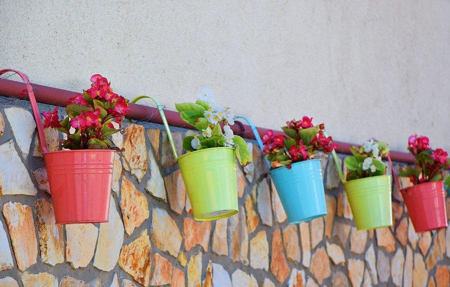 цветни кашпи цветя
